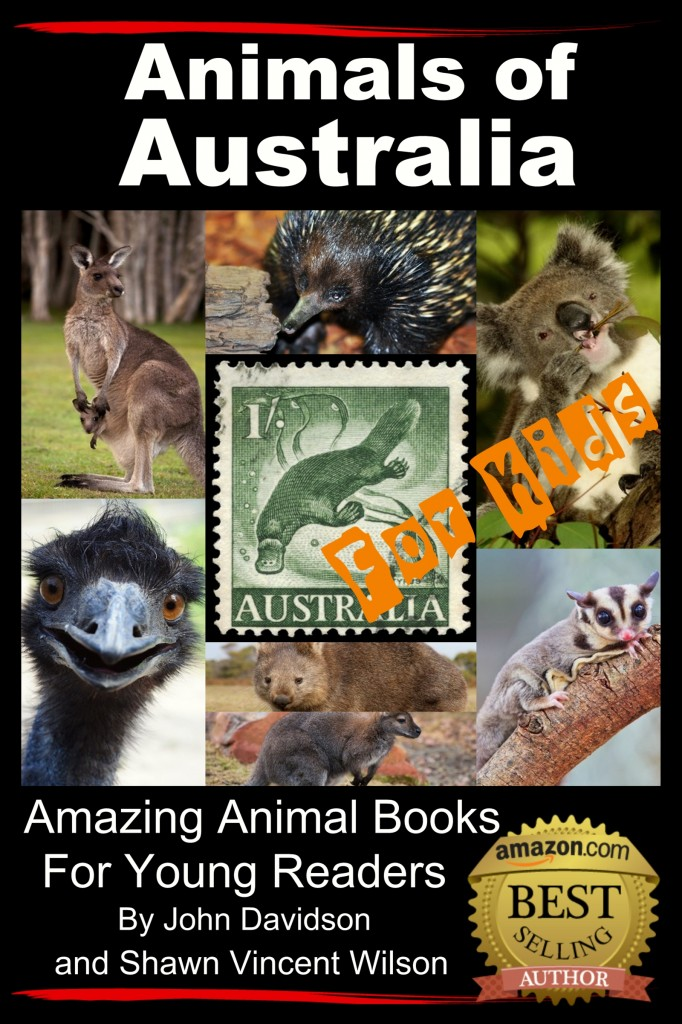 Animals of Australia cover