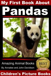 Pandas first book